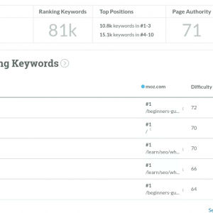 Screenshot of moz keyword analysis for its own website